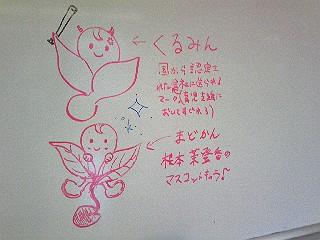 DVC00223.jpg